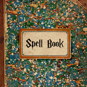 Spells Book Harry Potter