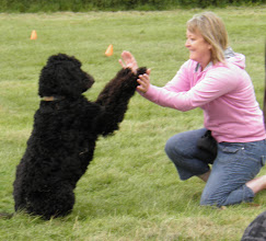 Photo: Lisa and Ralph Labradoodle in the middle of their Best Trick routine... they were so good!