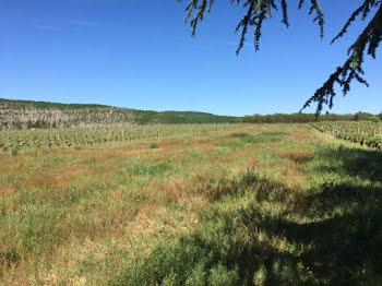 terrain à Parnac (46)