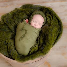 Green Peace by Chris Cavallo - Babies & Children Babies ( baby boy, basket, green, sleeping baby, bonnet, newborn, wrapping, boy, sleeping, softness, soft )