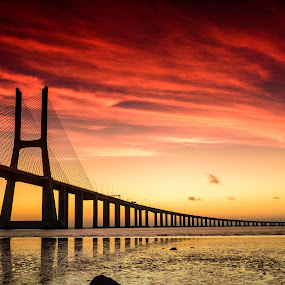 Bridge Vasco da Gama by Nuno Gomes - Landscapes Sunsets & Sunrises ( vasco da gama, bridge vasco da gama, bridge, portugal, lisboa )