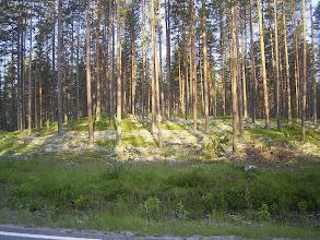 Photo: W dolinie Ljördal