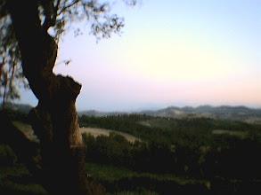 """Photo: Panorama da """"La Dulcamara"""", strada della Raticosa (Bologna), estate 2005"""
