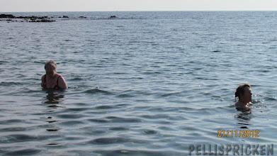 Photo: Riktiga sjödjur var dessa våra gäster.