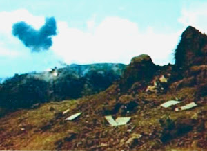 Photo: Ted Cattron picture.  Indicated taken from LZ Peanuts of incoming artillery.