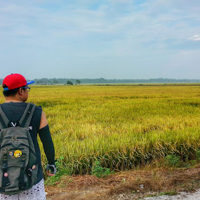 Greens with a touch of red by Tomato Wong - Novices Only Landscapes ( cycling, paddy field, tomatopix, landscape, nature photography )