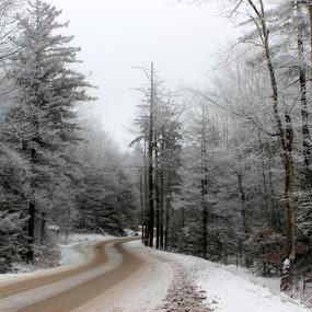 Snowclad Road by Avishek Bhattacharya - Landscapes Travel (  )
