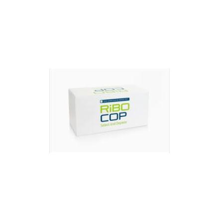 RiboCop rRNA Depletion Kit for Mixed Bacterial Samples (META)