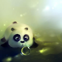 Cute HD Wallpapers icon