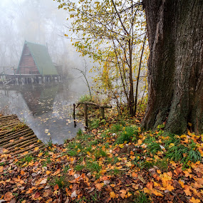 Cottage on the water in autumn by Zoltan Duray - Landscapes Waterscapes ( water, autumn, fog, cottage, pier, forest, house, danube, slovakia, river, , country, rustic, rural, old, backroads, barn, silo, farm, crops, family, garyfonglandscapes, holiday photo contest, photocontest )