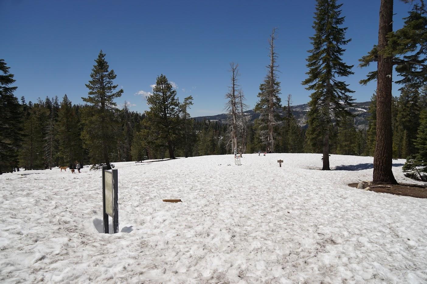 Yosemite snow fall