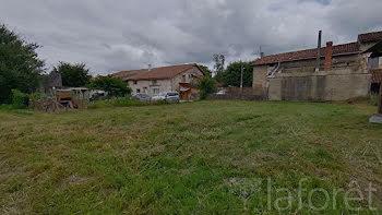 terrain à Saint-Martin-du-Mont (01)