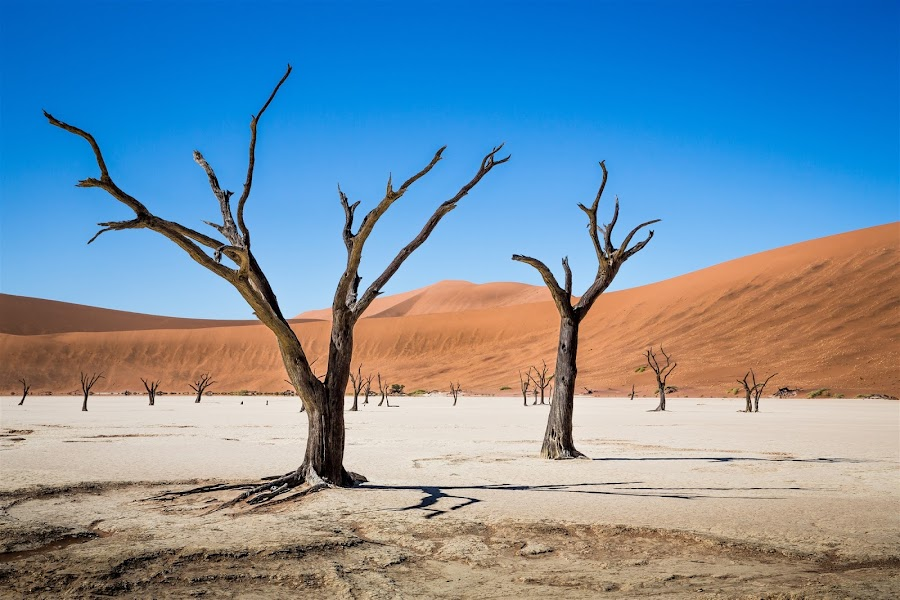 Dead Valley 2 by Kevin Standage - Landscapes Deserts ( canon, dead valley, landscape, africa, namibia )