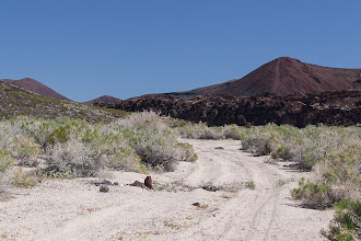 Photo: Sandy 4WD road in Mojave National Preserve, California.
