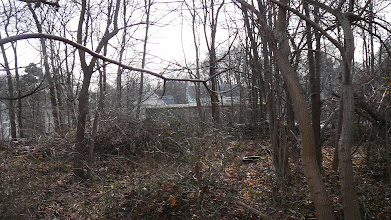 Photo: Rear 11 Packard Ln (for pano #8)