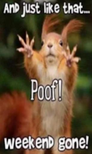 Lustige Videos Fur Whatsapp Lustige Videos Die Lustigsten