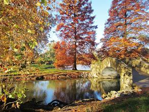 Photo: Bridge over a lake by orange trees at Eastwood Park in Dayton, Ohio.