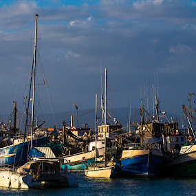 fisherboats by Dawie Nolte - Transportation Boats ( fisherboats, blue, boats, harbour, cloudy, sea )