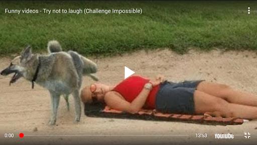 Foto do Funny Videos Top
