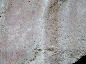 Photo: Sheep petroglyphs with a canine in the upper-left