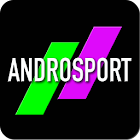AndroSport : Daily Home Coach icon