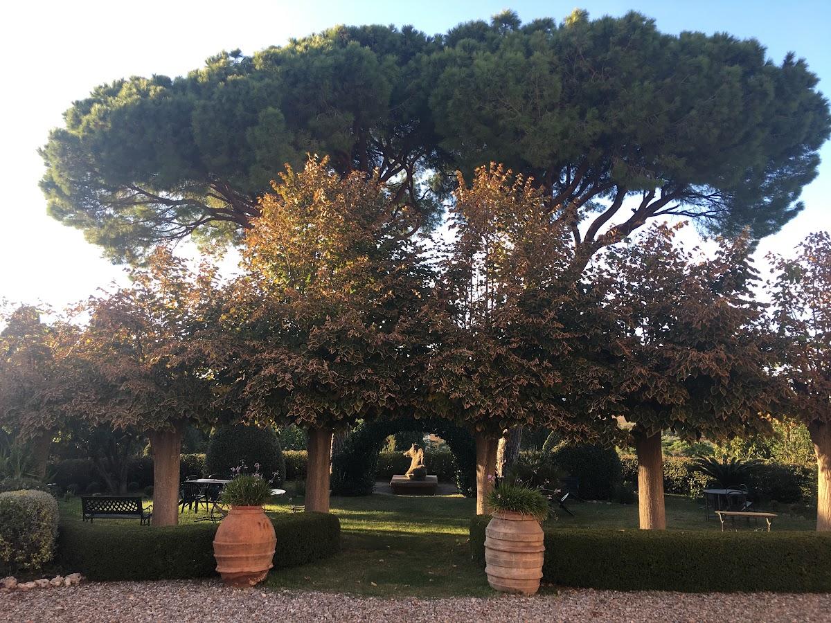 Villa Granducale, giardino Alberese