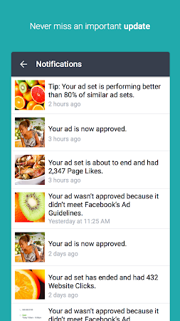 Facebook Ads Manager screenshot 25407