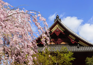 Photo: Ueno Park