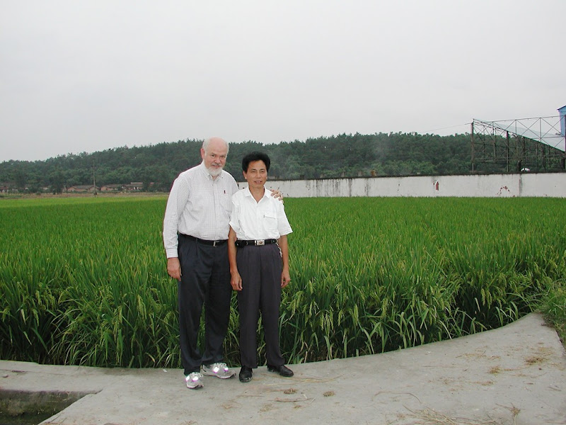 Photo: Liu Zhibin, hybrid seed farm manager in Meishan, Sichuan, with Norman Uphoff during visit in 2004. Liu started SRI evaluation and experimentation via his own 'triangular method' of transplanting in 2001. [Photo Courtesy of Norman Uphoff]