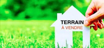 Terrain 10015 m2