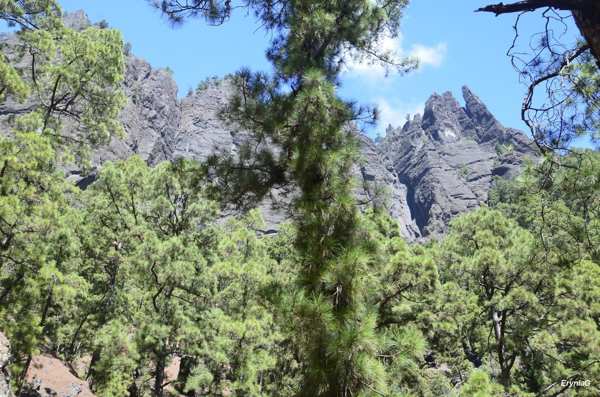 patrz: Barranco de las Angustias