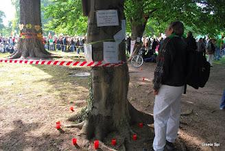 Photo: Großdemo im Park Samstag, 18.09.2010