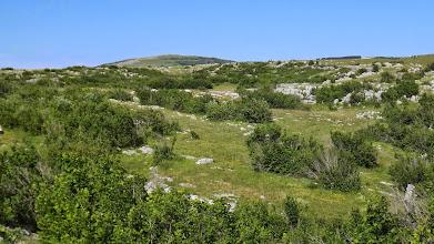 Photo: Kősivatag