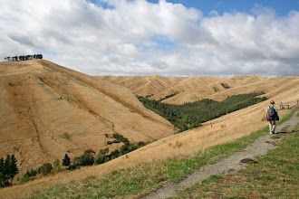 Photo: Wanderung in den Wither Hills