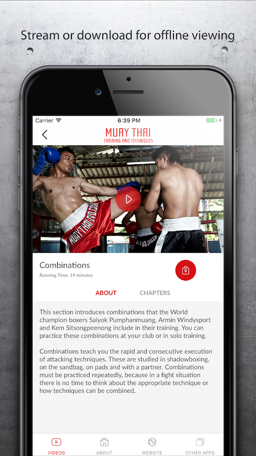 Muay Thai Training & Technique- screenshot