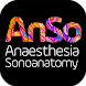 AnSo Anaesthesia Sonoanatomy