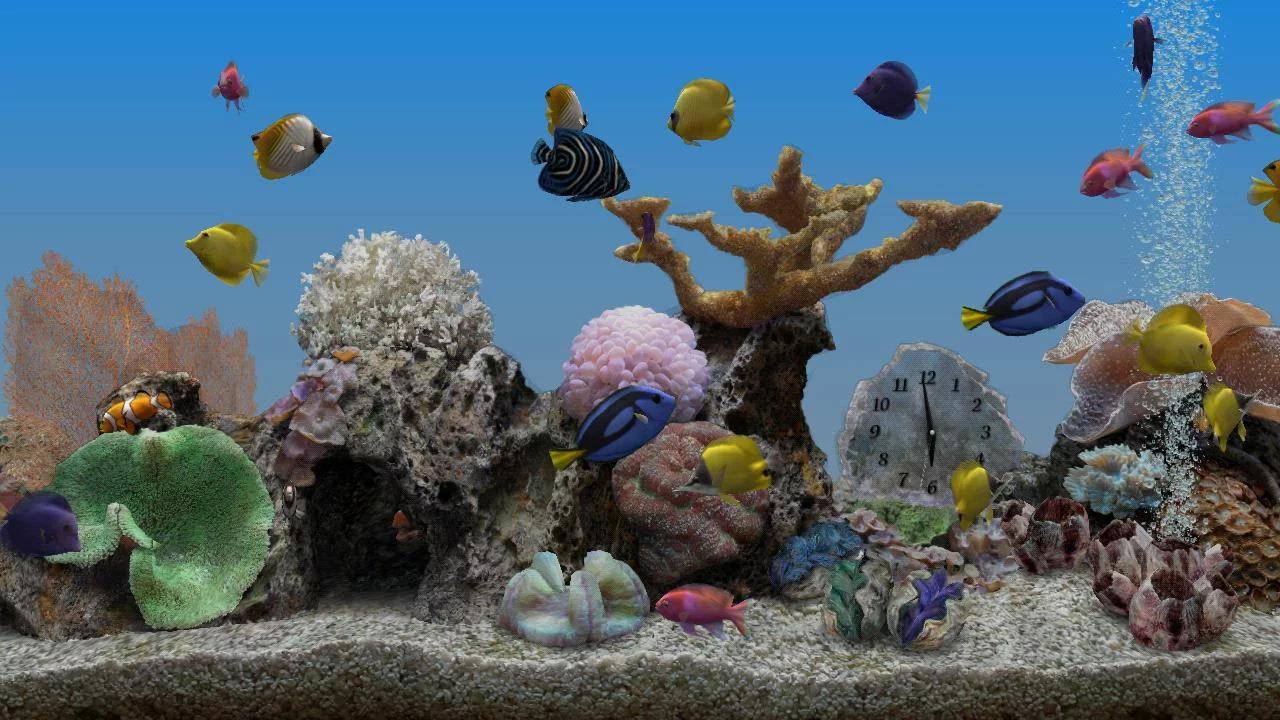 Marine aquarium 3 3 android apps on google play for Marina aquarium