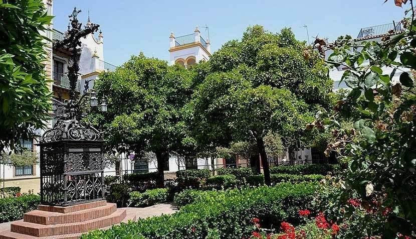 Resultado de imagen de plaza de santa cruz sevilla