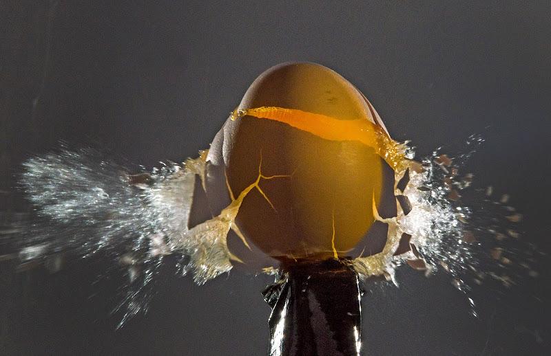 rompere le uova di stefano_angeli