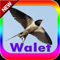 Suara pemanggil walet & inap icon