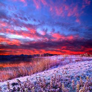 A Sunrise Frost JPEG POSTER.jpg