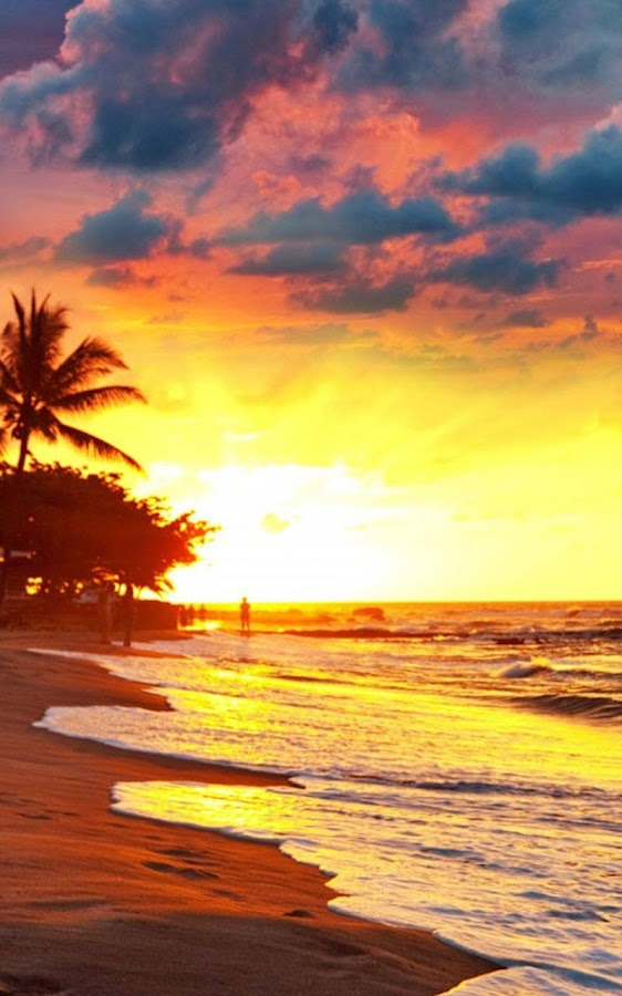 Live Wallpaper Sunset 28 Images Sunset Live Wallpapers Top Free