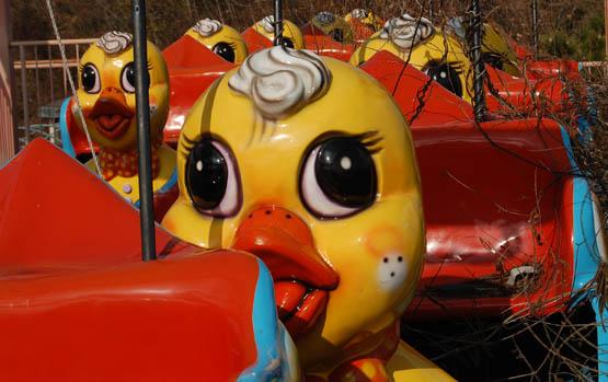 Dark Roasted Blend Abandoned Amusement Parks