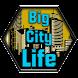 Big City Life : Simulator Pro