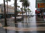 Sydney, Mainly