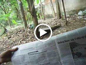 Video: SAM_0184 Báo Tuổi Trẻ Ngày 12 06 2013