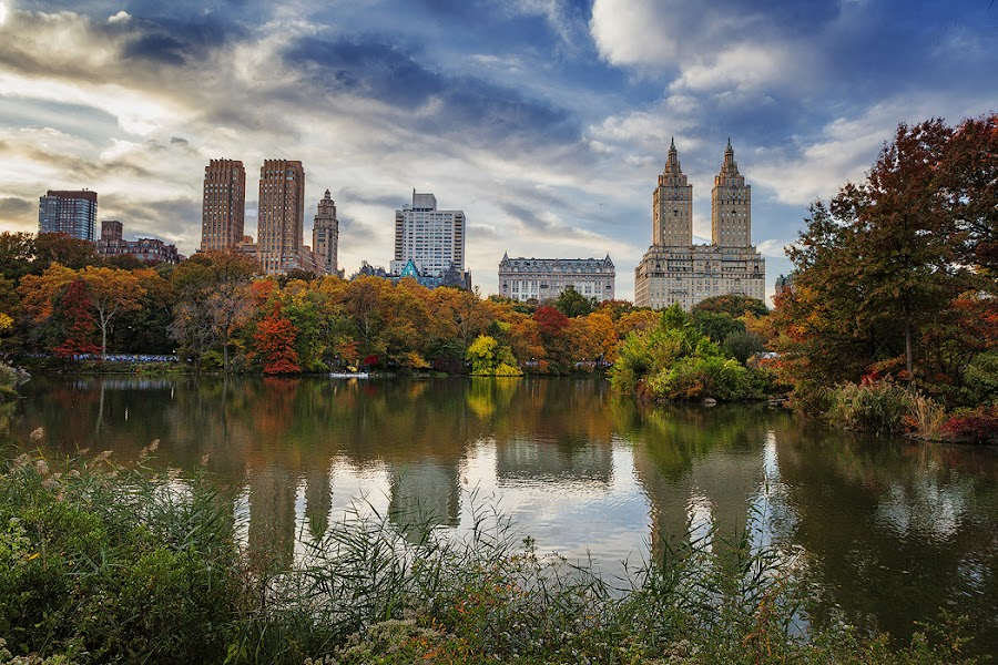 Fall in Central Park by Muhammad Bilal - City,  Street & Park  City Parks ( beautiful, new york, autumn colors, nyc, central park )