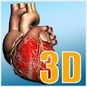 Explore heart in 3D icon
