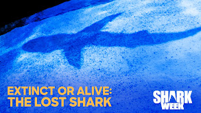Extinct or Alive: The Lost Shark thumbnail