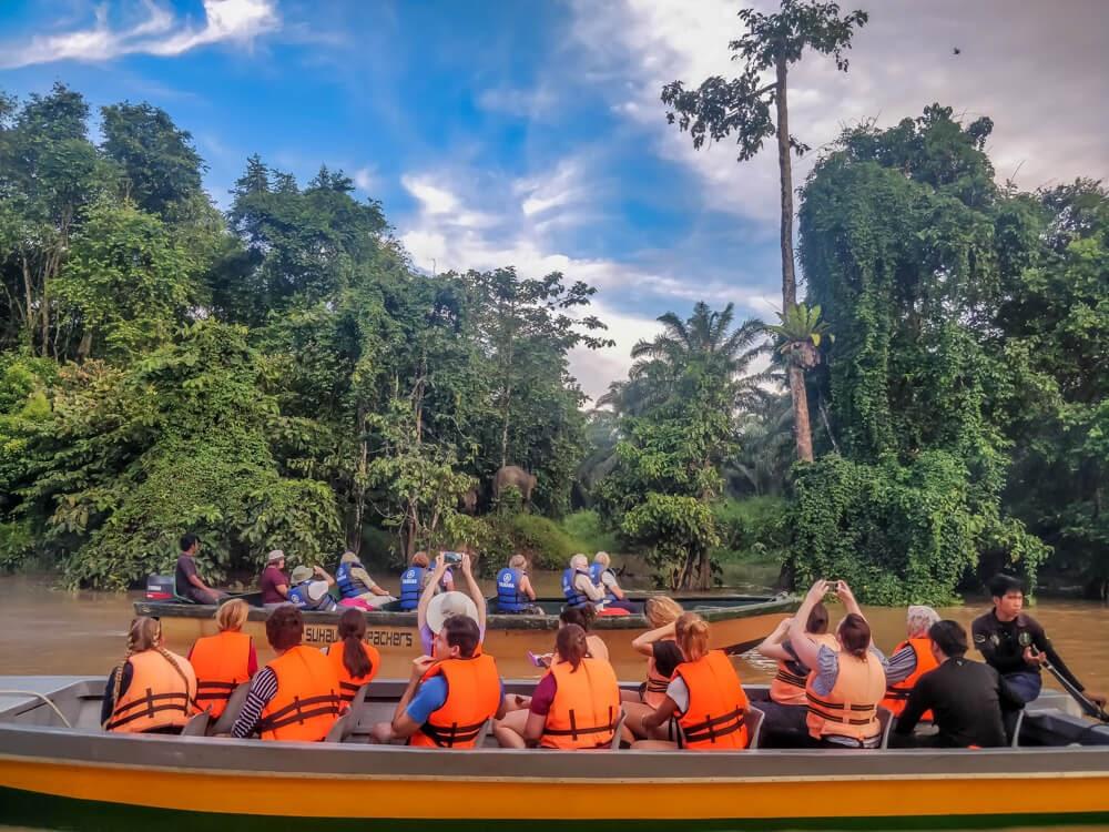 kinabatangan+river+cruise+pigmy+elephant++sukau+village+sabah+malaysia
